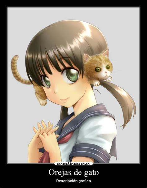 imagenes de gatos anime kawaii gatos kawaii anime
