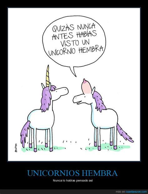 imagenes chidas de unicornios unicornios hembra