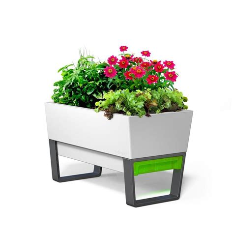 planter with stand glowpear 29 in x 20 in white plastic self watering planter with stand gpugsp 001 the home depot
