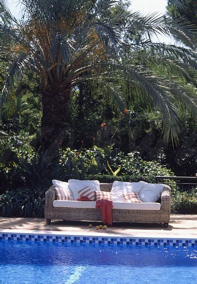 palm tree sofa palm tree sofa palm tree sofa tropical living room with