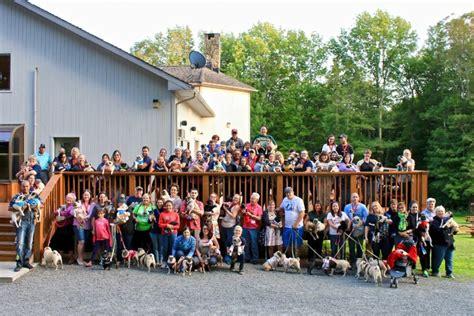 mops pug rescue adoption home pug squad