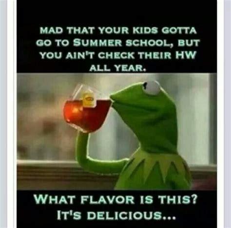 Summer School Meme - summer school kermit meme s pinterest