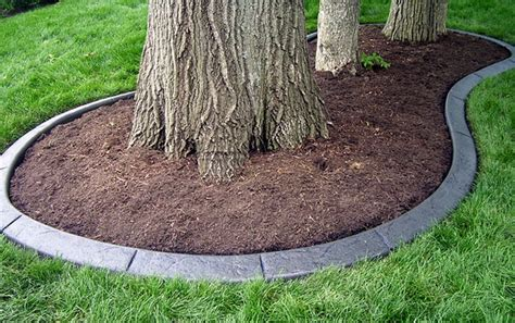 Concrete Edging Color I Want Too Diy Pinterest Concrete Landscape Borders