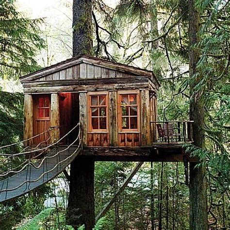 treehouse point issaquah wa playing house helpful