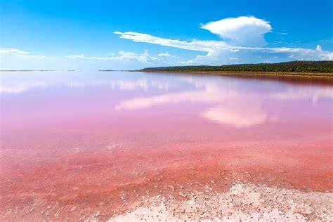 pink lake how to visit the pink lake in australia jetset