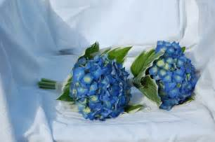 blue flowers for wedding ideas on beautiful blue wedding bouquets