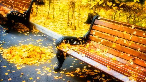 fall bench benches hd wallpaper 1920x1080 33261