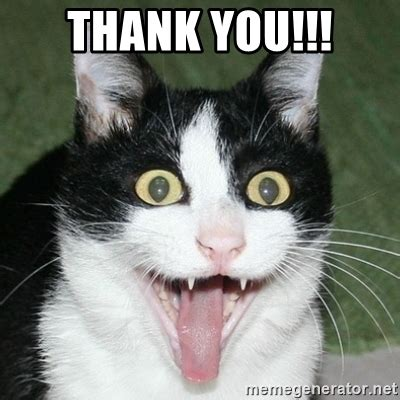Thank You Cat Meme - thank you excited cat meme generator