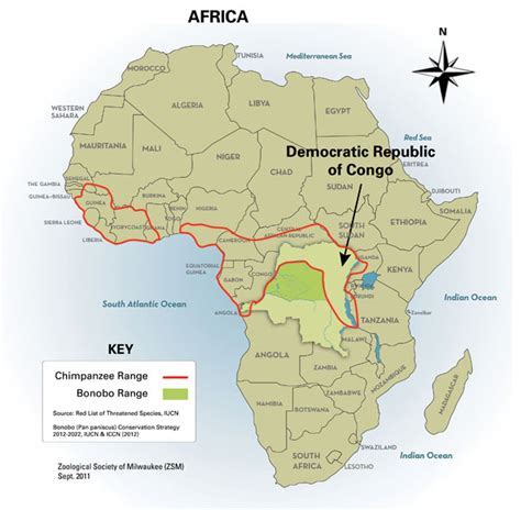 congo river map zaire river map