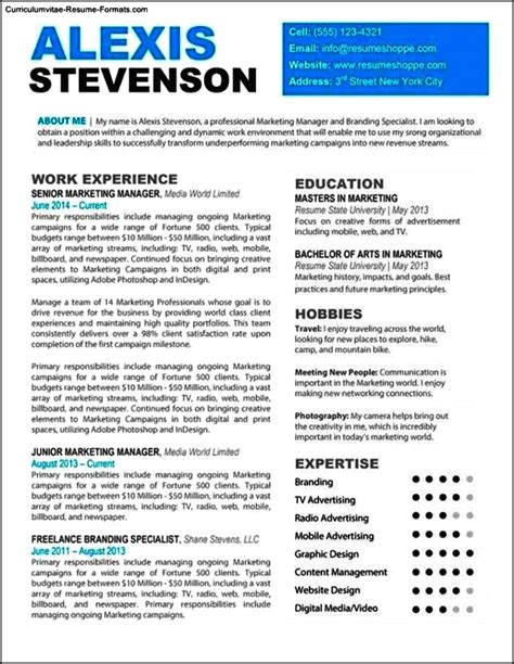 Professional Looking Resume professional looking resume templates free sles