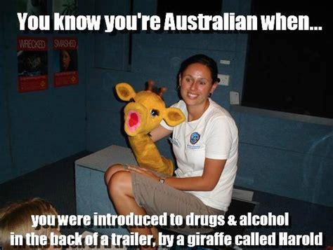 Australian Meme - on education australian memes memes and internet