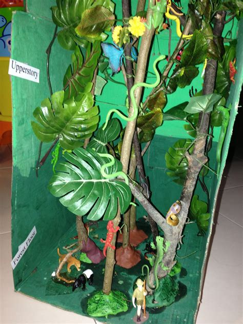 How To Make Rainforest Trees Out Of Paper - creating trees for a rainforest biome box search