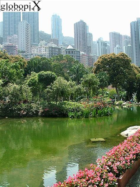 Hong Kong Botanical Gardens Photo Hong Kong Hong Kong Botanic Garden Globopix