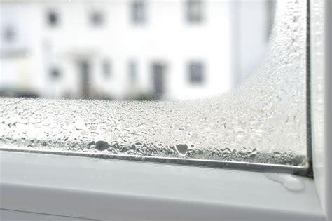 Schimmel Holzfenster by Fenster Renovieren Ein 220 Berblick Ofri Magazin
