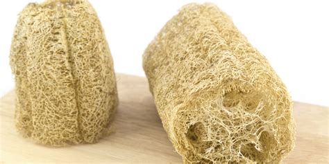 bathroom loofah you should probably stop using a loofah in the shower sorry huffpost