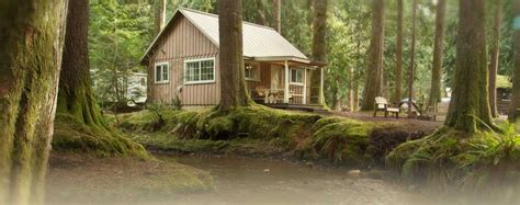 Cabins Mount by Lodging Mount Resort Ashford Washington