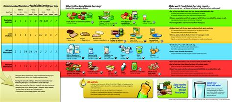 the food guide to the components of a healthy diet healthy lifestyle