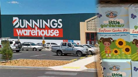 bunnings warehouse   launched   collectible