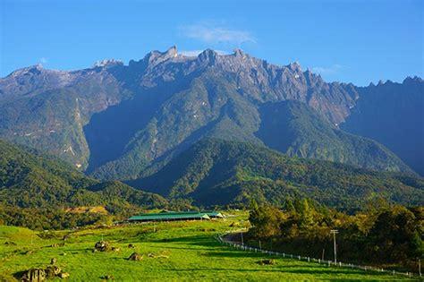 Plant Lovers majestic mount kinabalu sabah east malaysia