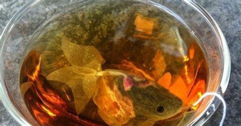 Teh Celup Villa mau minum teh yang ada ikan kokinya berita ringan