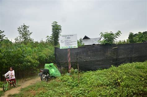membuat yel yel kelompok satu rumah kompos harapan baru petani aunupe konawe selatan