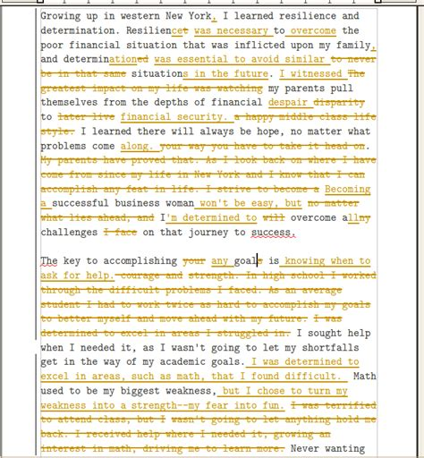 Determination Essay by Determination Essay