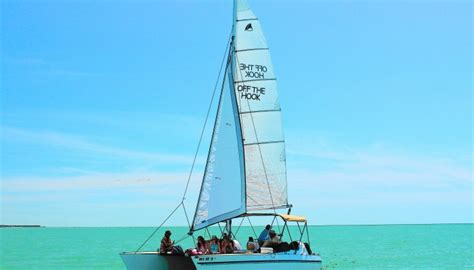 catamaran sailing marco island sail marco island florida beaches for dolphins on our boat
