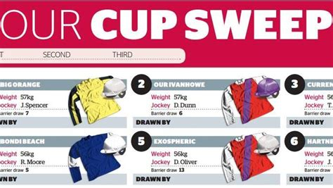 Sweepstakes Melbourne Cup - melbourne cup sweep the examiner