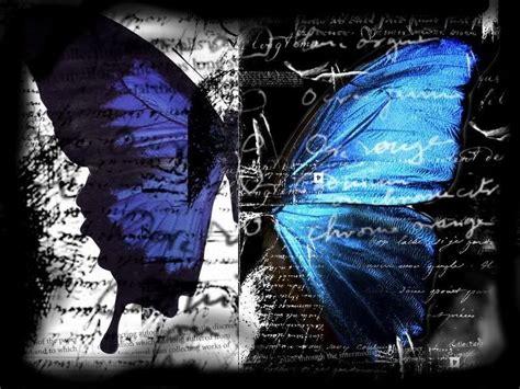 wallpaper black butterfly black butterfly wallpapers wallpaper cave