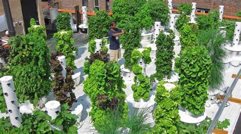 Aeroponic Vertical Garden Farming In Your Backyard There S A Vertical