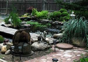 turtle pond envy turtlewife s weblog