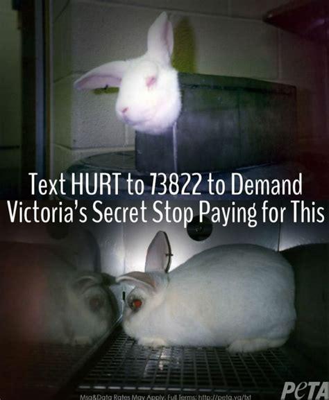 Save My Pet Sticker Free Canada