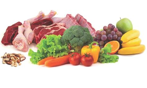 vegetables on paleo diet what is the paleo diet american paleo association