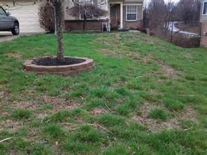 how much does it cost to sod a backyard how much does it cost to lay sod angies list