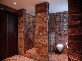 small bathroom ideas with walk in shower images