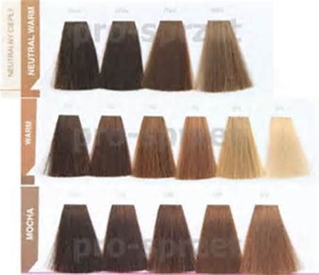 matrix socolor color chart pdf matrix hair colour shade chart hairsjdi org
