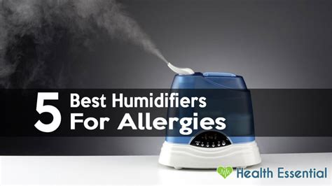 top 5 bedroom humidifiers what is a humidifier 5 best humidifiers for allergies sinus problems asthma