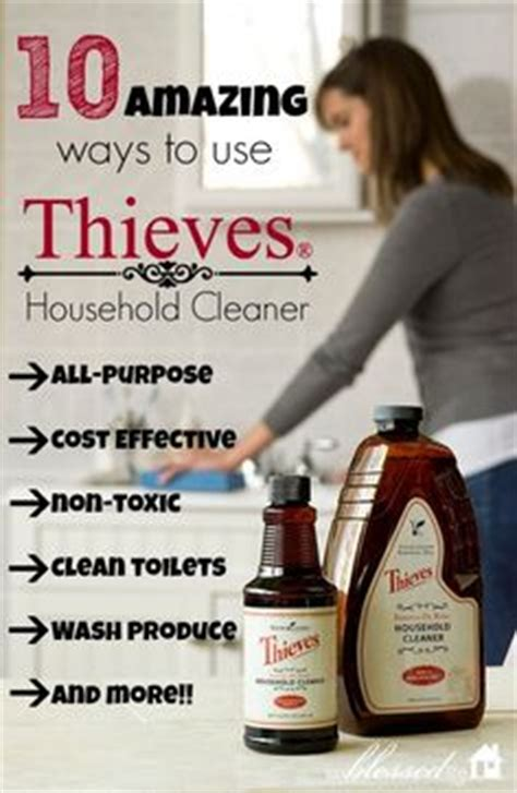 how to get rid of thieves in a room living thieves cleaner on thieves cleaner thieves household cleaner and