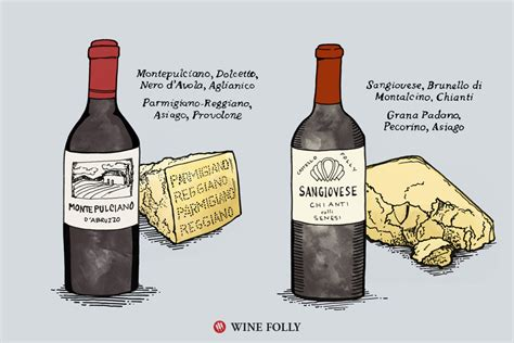 what is port wine wine folly 6 tips on pairing wine and cheese wine folly