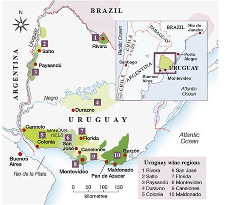 Can You Match The Wine To Its Region Of Origin by Anson Why Uruguay Could Be The New Jura Decanter
