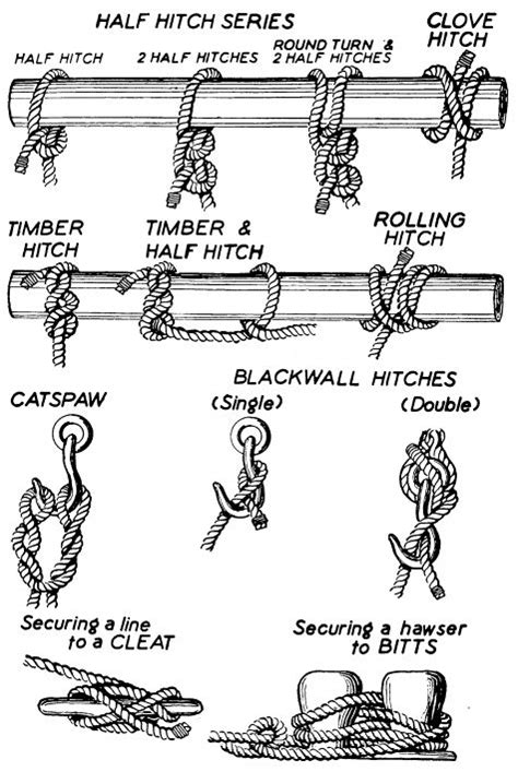 Different Types Of Macrame Knots - 105 best images about knots on