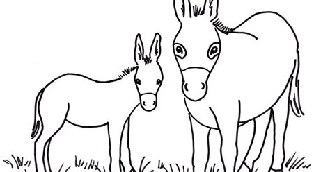 coloring page for donkey realistic donkey coloring page coloring pages donkey