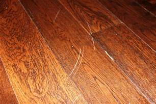 Wood Floor Scratch Repair Repairing Hardwood Floor Floors Design For Your Ideas Iunidaragon
