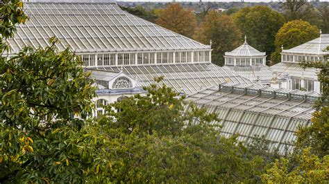 Royal Botanic Gardens At Kew Temperate House Restoration Kew