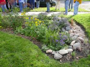 rain gardens friends of bolin creek
