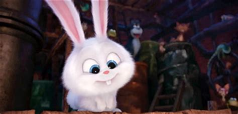 secret of pets white meet snowball the rabbit in new trailer for the secret of pets firstshowing net