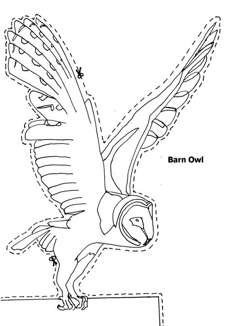 barn owl animals town printable coloring pages