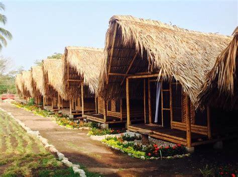 Tiki Hut Palomino by Cabbains Picture Of The Tiki Hut Hostel Palomino