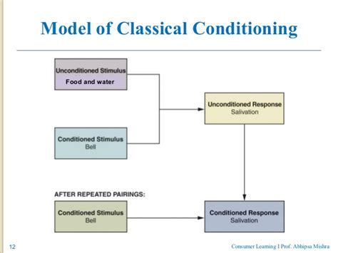 classical conditioning diagram consumer learning