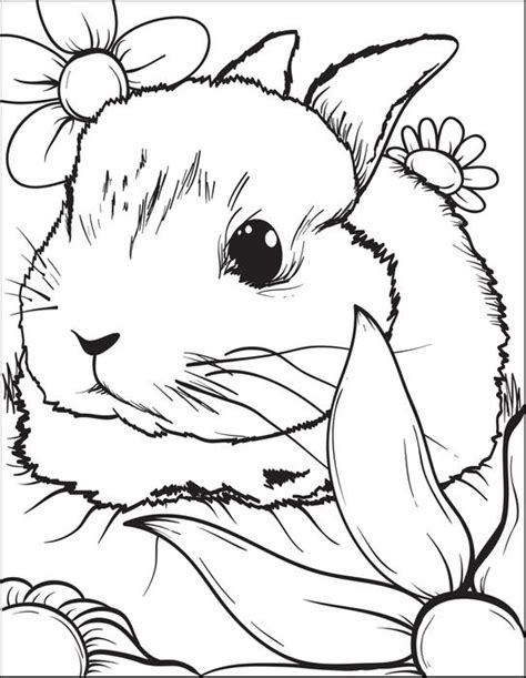 realistic bunny coloring page realistic rabbit coloring pages gianfreda 613623